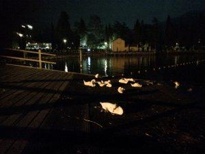 Nachts am Gardasee