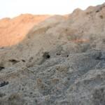 Kormakiti Campen in Zypern